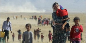 refugiados-yazidies_560x280